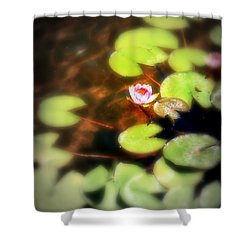 Pond Flower Shower Curtain by Perry Webster
