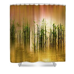 Shower Curtain featuring the photograph Pond Grass Abstract   by Jessica Jenney