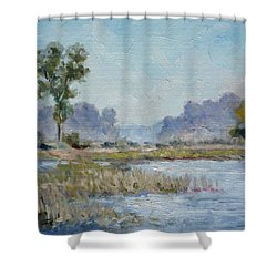 Pond In The Woods 1 Shower Curtain