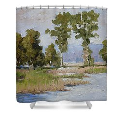 Pond In The Woods 2 Shower Curtain