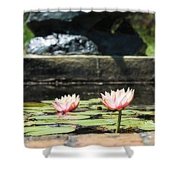 Pond Palette Shower Curtain