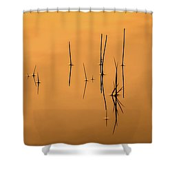 Pond Reeds In Reflected Sunrise Shower Curtain