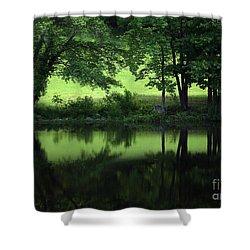 Pond Reflect Shower Curtain by Karol Livote