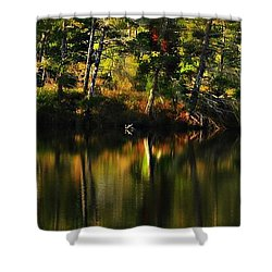 Shower Curtain featuring the photograph Pond Reflections by Katie Wing Vigil