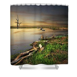 Pond Shore Shower Curtain