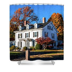Pond Street Life In Jp Shower Curtain