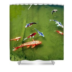 Shower Curtain featuring the photograph Pond With Koi Fish by Joseph Frank Baraba