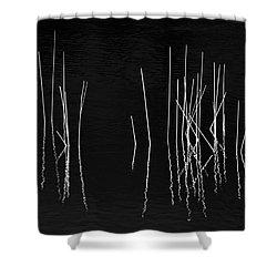 Pond Zen Shower Curtain