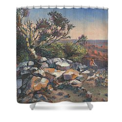 Pondering By The Canyon Shower Curtain