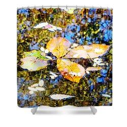 Shower Curtain featuring the photograph Pondering by Melissa Stoudt