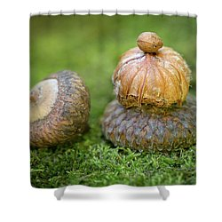Shower Curtain featuring the photograph Pondering With Nature by Dale Kincaid