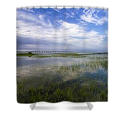 Ponquogue Bridge Springtime Shower Curtain