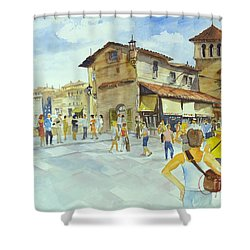 Ponti Vecchio Shower Curtain