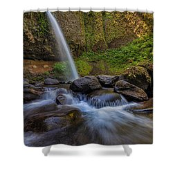 Ponytail Falls Shower Curtain by David Gn