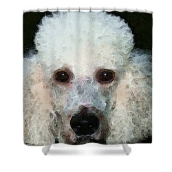 Poodle Art - Noodles Shower Curtain by Sharon Cummings