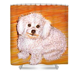 Shower Curtain featuring the painting Poodle by Patricia L Davidson