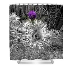 Shower Curtain featuring the photograph Poof by Marie Neder