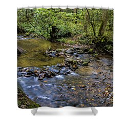 Pool At Cooper Creek Shower Curtain