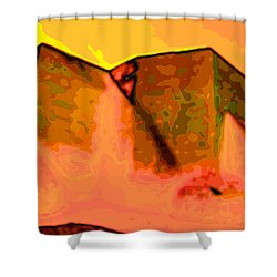 Pop  Shower Curtain by Charles Muhle