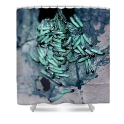 Shower Curtain featuring the photograph Pop Macro No. 1 by Laura Melis