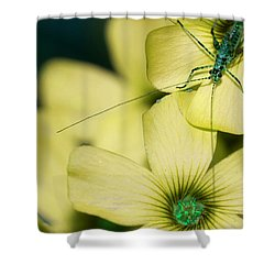 Shower Curtain featuring the photograph Pop Macro No. 2 by Laura Melis