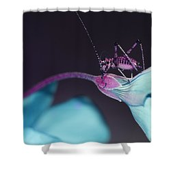 Shower Curtain featuring the photograph Pop Macro No. 3 by Laura Melis