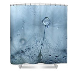 Pop Up Shower Curtain by Rebecca Cozart