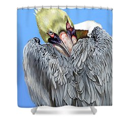 Popeye The Pelican Shower Curtain