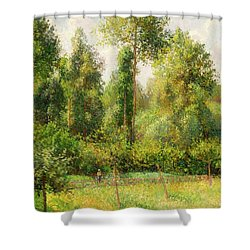 Shower Curtain featuring the painting Poplars - Eragny by Camille Pissaro
