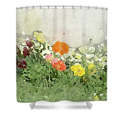 Poppies-2-c Shower Curtain