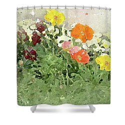 Poppies 2-f Shower Curtain