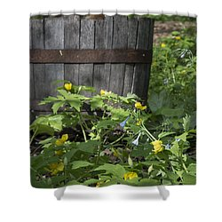 Poppies And Bluebells Shower Curtain