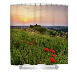 Shower Curtain featuring the photograph Poppies Burns by Davor Zerjav