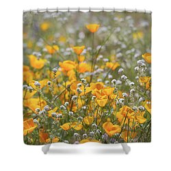 Shower Curtain featuring the photograph Poppies Fields Forever  by Saija Lehtonen