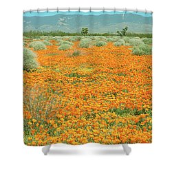 Shower Curtain featuring the photograph Poppies For Ever - Poppy Fields Mohave Desert California by Ram Vasudev