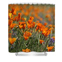 Shower Curtain featuring the photograph Poppies by Patrick Witz