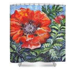 Poppy Brilliance Shower Curtain by Carol Wisniewski
