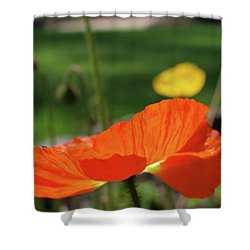 Poppy Cup Shower Curtain