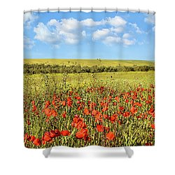 Shower Curtain featuring the photograph Poppy Fields by Marion McCristall