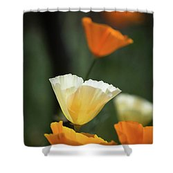 Poppy Glow Shower Curtain