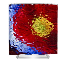 Poppy Impressions Shower Curtain