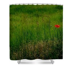 Shower Curtain featuring the photograph Poppy In The Field by Marija Djedovic