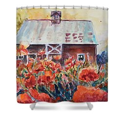 Poppy Morning Shower Curtain by P Maure Bausch