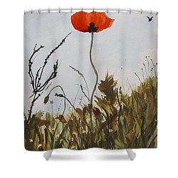 Poppy On The Field Shower Curtain