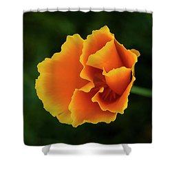 Poppy Orange Shower Curtain