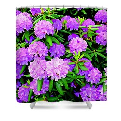 Pops Of Purple Shower Curtain