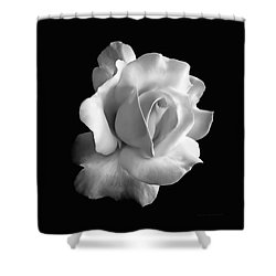 Porcelain Rose Flower Black And White Shower Curtain