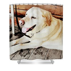 Porch Pooch Shower Curtain