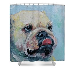 Pork Chop Shower Curtain