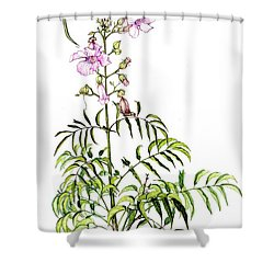 Shower Curtain featuring the painting Port St John's Creeper by Heidi Kriel